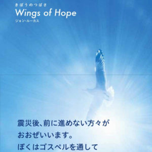 wings-of-hope-book